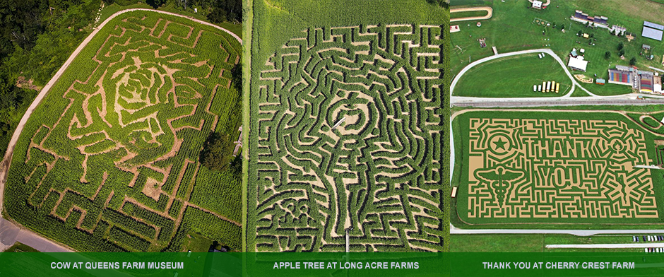 Our Mazes